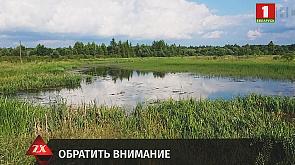 Зона Х. Вечерний выпуск (30.06.2020)