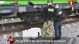 Контрабандные сигареты нашли польские пограничники в грузовом поезде из Беларуси