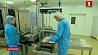 Борисовский завод медпрепаратов представил новый производственный участок Барысаўскі завод медпрэпаратаў прадставіў новы вытворчы ўчастак Borisov Plant of Medications launches new production site