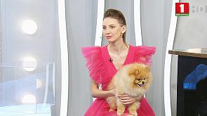 Татьяна Матусевич - телеведущая