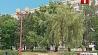 В Беларуси эта неделя начнется с прохладной погоды У Беларусі гэты тыдзень пачнецца з халаднаватага надвор'я