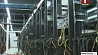 Новый вид киберпреступления - телефонный флуд - зафиксирован в столице Новы від кіберзлачынства - тэлефонны флуд - зафіксаваны ў сталіцы