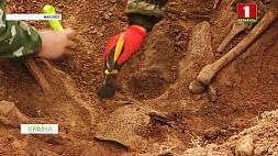 Останки бойцов Красной армии обнаружили поисковики рядом с поселком Гаи  Астанкі байцоў Чырвонай арміі выявілі пошукавікі побач з пасёлкам Гаі
