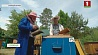 В Минской области начался сбор весеннего меда У Мінскай вобласці пачаўся збор вясновага мёду