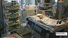Белорусские медики впервые прооперировали два порока сердца у новорожденного Беларускія медыкі ўпершыню прааперыравалі два парокі сэрца ў нованароджанага   Belarusian doctors operate on two heart defects in newborn weighing only 2.5 kilos
