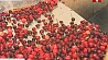 В Пинском районе планируют наладить переработку клюквы У Пінскім раёне плануюць наладзіць перапрацоўку журавін