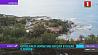 Оползни в Норвегии унесли в океан 8 домов