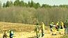 Минчане посадят 30 тысяч елей, дубов и кленов Мінчане пасадзяць 30 тысяч елак, дубоў і клёнаў.