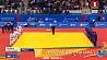 Сборная Беларуси победила Венгрию и вышла в четвертьфинал