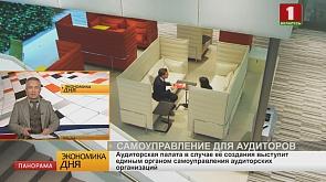 Аудиторская палата в случае её создания выступит единым органом самоуправления аудиторских организаций