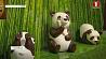 "Шоколадный рояль, платье, пингвины, панды и зеленая капуста на выставке ""Искусство шоколада""  Шакаладны раяль, сукенка, пінгвіны, панды і зялёная капуста на выставе ""Мастацтва шакаладу"""