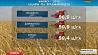 Аграрии Минской области приближаются к рубежу в полтора миллиона намолоченного зерна Аграрыі Мінскай вобласці набліжаюцца да мяжы  паўтара мільёна   намалочанага зерня