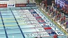 Александра Герасименя выиграла серебро восьмого этапа Кубка мира по плаванию в Токио Аляксандра Герасіменя выйграла серабро восьмага этапу Кубка свету па плаванні ў Токіа Alexander Gerasimenya wins gold at the eighth stage of the Silver Cup