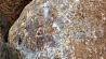 Во Франции валуном раздавило двух детей У Францыі валуном раздушыла двух дзяцей