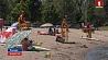 Из-за аномальной жары в Канаде погибли 19 человек