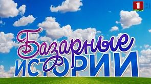 Дневники Славянского базара