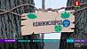 Судьба зеленой зоны - Грушевского сквера в Минске - решена. Парковой территории быть Лёс зялёнай зоны - Грушаўскага сквера ў Мінску - вырашаны