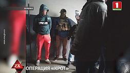 В Украине бойцы СБУ ликвидировали наркогруппировку