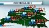 Всего 7% площадей осталось засеять в Беларуси