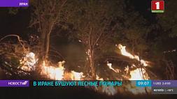 В Иране бушуют лесные пожары