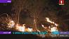 В Иране бушуют лесные пожары  У Іране бушуюць лясныя пажары
