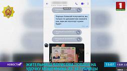 Жительница Борисова попала на удочку мошенника из-за границы Жыхарка Барысава папала на вудачку ашуканца з-за мяжы