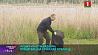 """Присоединиться к акции """"Чистый водоем"""" может каждый Далучыцца да акцыі """"Чысты вадаём"""" могуць усе жыхары All residents can join """"Clean Reservoir"""" campaign"""