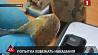 В Telegram-канале МВД появилась информация о нападении с ножом на милиционера