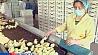 Четыре птицефабрики обязали снизить цены Чатыры птушкафабрыкі абавязалі знізіць цэны