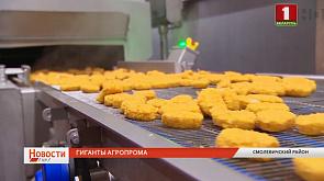 Предприятия АПК Беларуси планируют экспортировать продовольствия почти на 15 миллиардов рублей