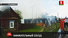 Лесник спас двоих детей на пожаре в Лельчицком районе
