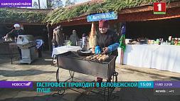 В Беловежской Пуще проходит гастрофест У Белавежскай Пушчы праходзіць гастрафэст