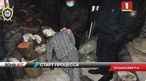 """Витебский областной суд приступил к рассмотрению уголовного дела по статье """"Убийство, совершенное с особой жестокостью"""""""
