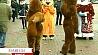 Сегодня Рождественская ярмарка открывает предпраздничный марафон шоппинга Сёння Калядны кірмаш адкрывае перадсвяточны марафон шопінгу