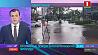 Проливные дожди затопили Южную Флориду