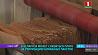 В Беларуси может снизиться плата за утилизацию бумажных пакетов  У Беларусі можа знізіцца плата за ўтылізацыю папяровых пакетаў  Fee for recycling paper bags may decrease