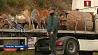 В Испании продолжается операция по спасению двухлетнего мальчика, который упал в узкий ров У Іспаніі працягваецца аперацыя па выратаванні двухгадовага хлопчыка, які  ўпаў у вузкі роў