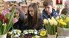 Яркие моменты праздника 8 Марта Яркія моманты свята 8 Сакавіка