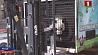 Сегодня из китайской провинции Сычуань в столицу Австрии отправился бамбуковый мишка Сёння з кітайскай правінцыі Сычуань у сталіцу Аўстрыі адправіўся бамбукавы мішка