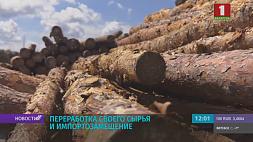Александр Лукашенко посещает Светлогорский целлюлозно-картонный комбинат Аляксандр Лукашэнка наведвае Светлагорскі цэлюлозна-кардонны камбінат President visits pulp and paper plant in Svetlogorsk
