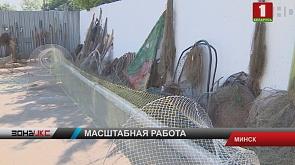 Сотни орудий нелегальной добычи рыбы и десятки километров сетей