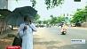 Аномальная жара в Индии Анамальная спякота ў Індыі