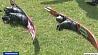Международные соревнования по воднолыжному спорту прошли в Новополоцке Міжнародныя спаборніцтвы па вадналыжным спорце прайшлі ў Наваполацку Novopolotsk hosts international water skiing tournament