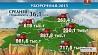 Средняя урожайность по республике 36,1 центнера с гектара Сярэдняя ўраджайнасць па рэспубліцы 36,1 цэнтнера з гектара Average yield capacity in Belarus makes up 36.1 centners per hectare