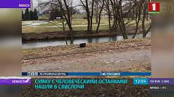 Сумку с человеческими останками нашли в Cвислочи Сумку з чалавечымі астанкамі знайшлі ў Cвіслачы