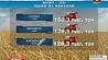 Аграрии Минской области прешагнули рубеж в полтора миллиона намолоченного зерна Аграрыі Мінскай вобласці перасягнулі мяжу паўтара мільёна намалочанага збожжа