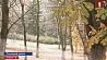 Cнег выпал в большинстве районов Витебской области Cнег выпаў у большасці раёнаў Віцебскай вобласці