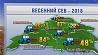 Ранние яровые в Беларуси   посеяны на 43,5 % площадей  Ранняя ярына ў Беларусі   пасеяна на 43,5 % плошчаў