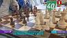 Международный шахматный фестиваль проходит в Бресте Міжнародны шахматны фестываль праходзіць у Брэсце