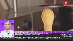 Производство экологичной посуды из отрубей планируют запустить в Беларуси